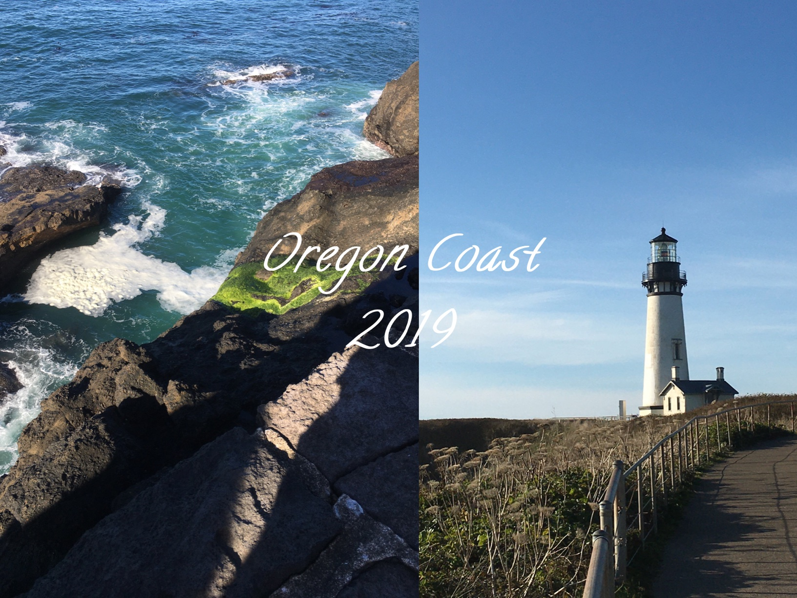 Oregon Coast 2019
