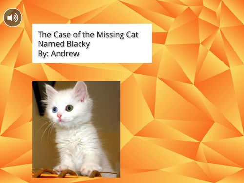 The Case of the Missing Cat Named Blacky