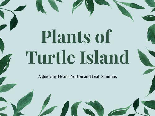 Plants of Turtle Island
