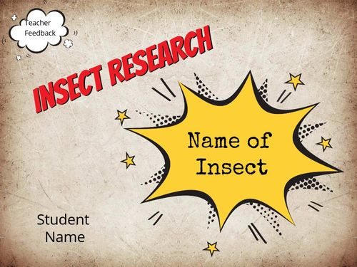 Insect Research Template