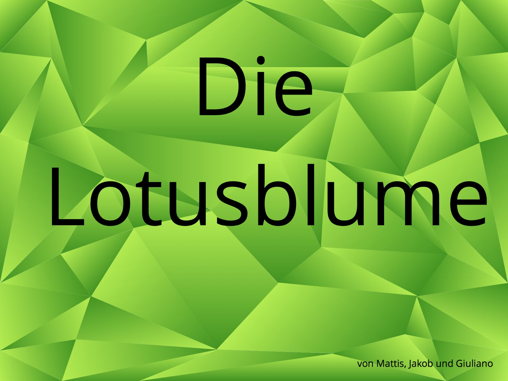 Lotusblume - Lotus Effekt