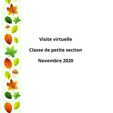 visite virtuelle novembre 2020