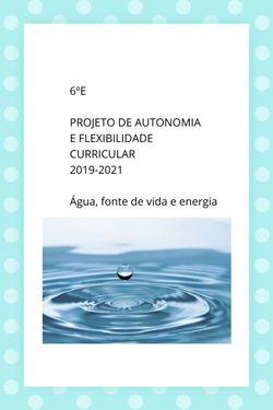 6ºE Projeto AutonomiaFlexibilidade Curricular