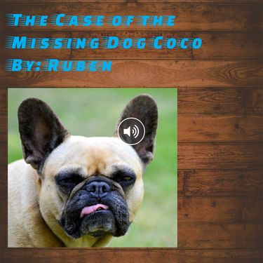 The Case of the Missing Dog Named Coca