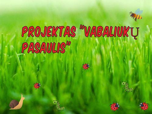 """Projektas """"Vabaliukų pasaulis"""""""