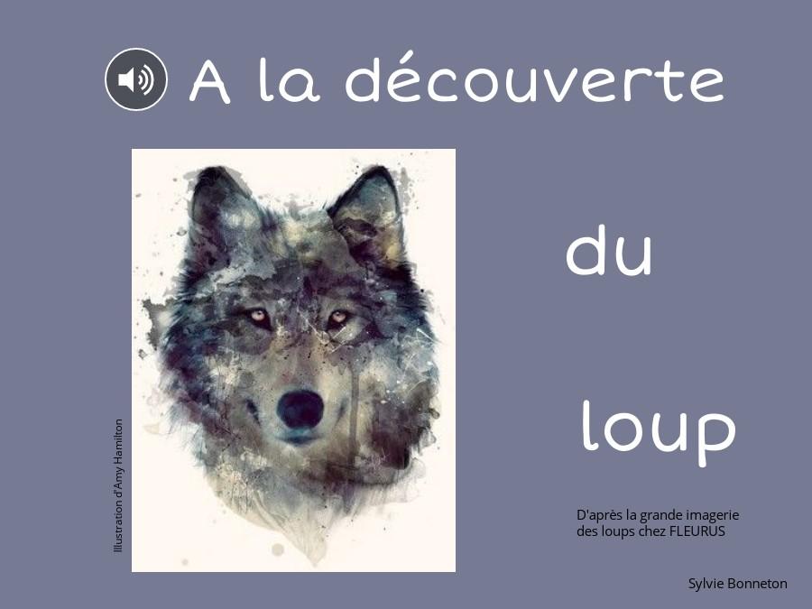 A la découverte du loup