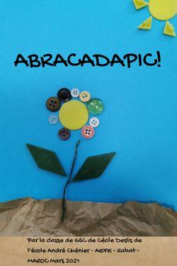 ABRACADAPIC
