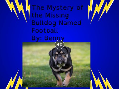 The Case of the Missing Dog Named Football