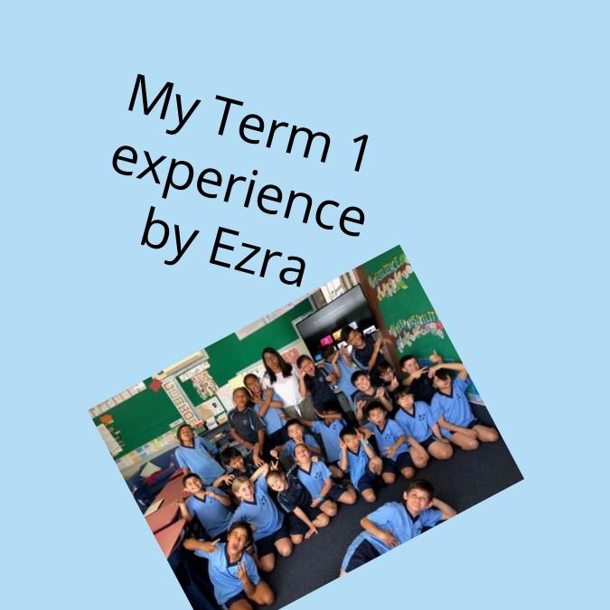 My Term 1 Experience