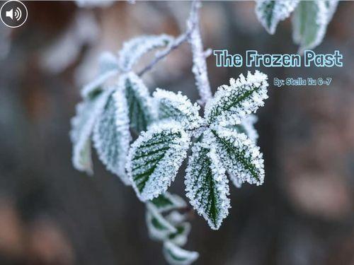 The Frozen Past