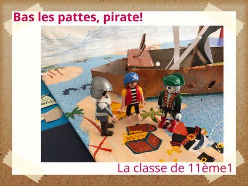 Bas Les Pattes, Pirate!