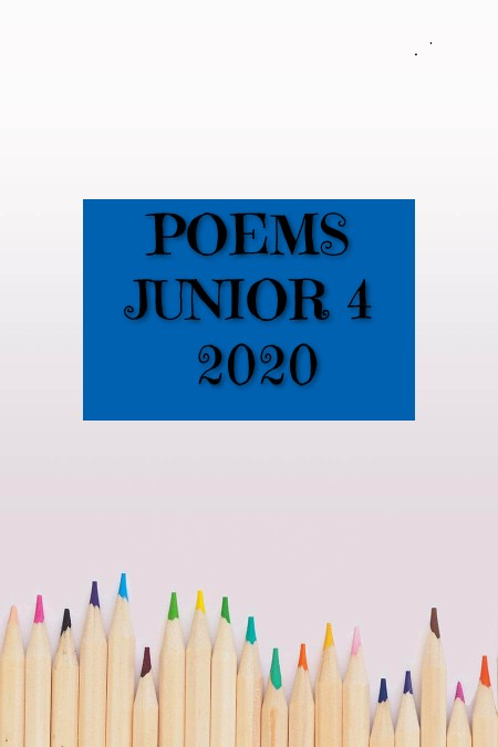 Ir al blog Junior 4 2020
