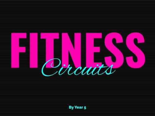 Fitness Circuits