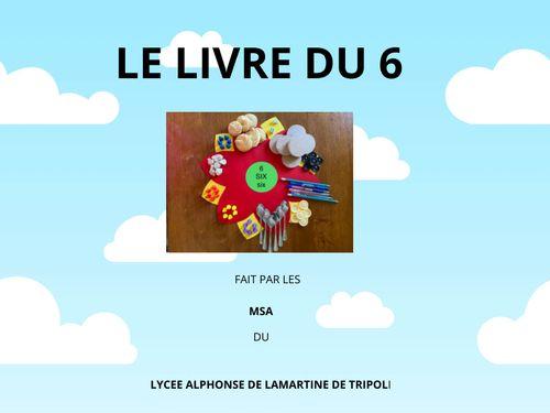 LE LIVRE DU 6