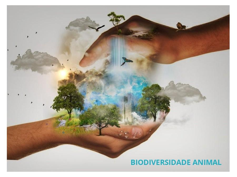 Biodiversidade Animal