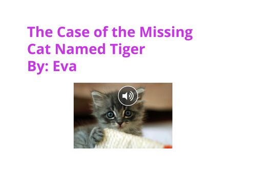 The Case of the Missing Cat Named Tiger