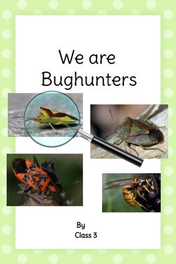 We are Bughunters
