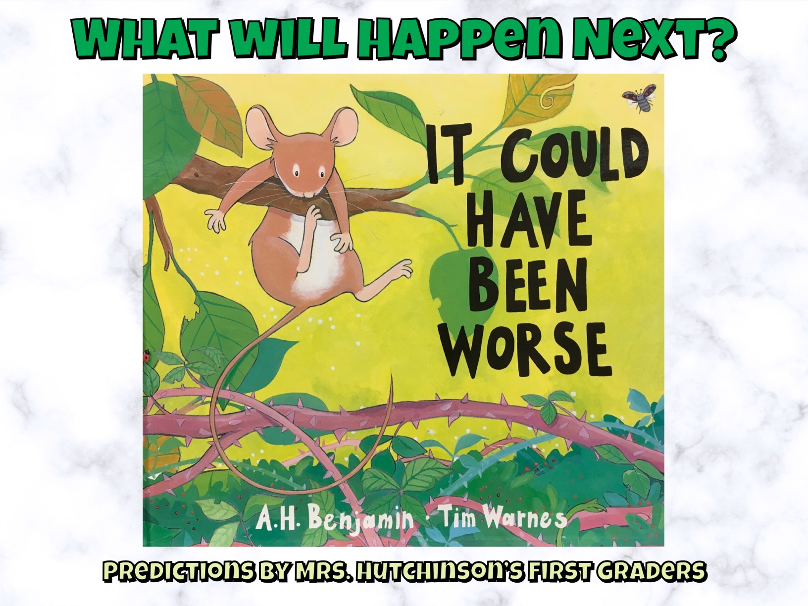 What Happened to the Snake_Mrs. Hutchinson's Class Predictions