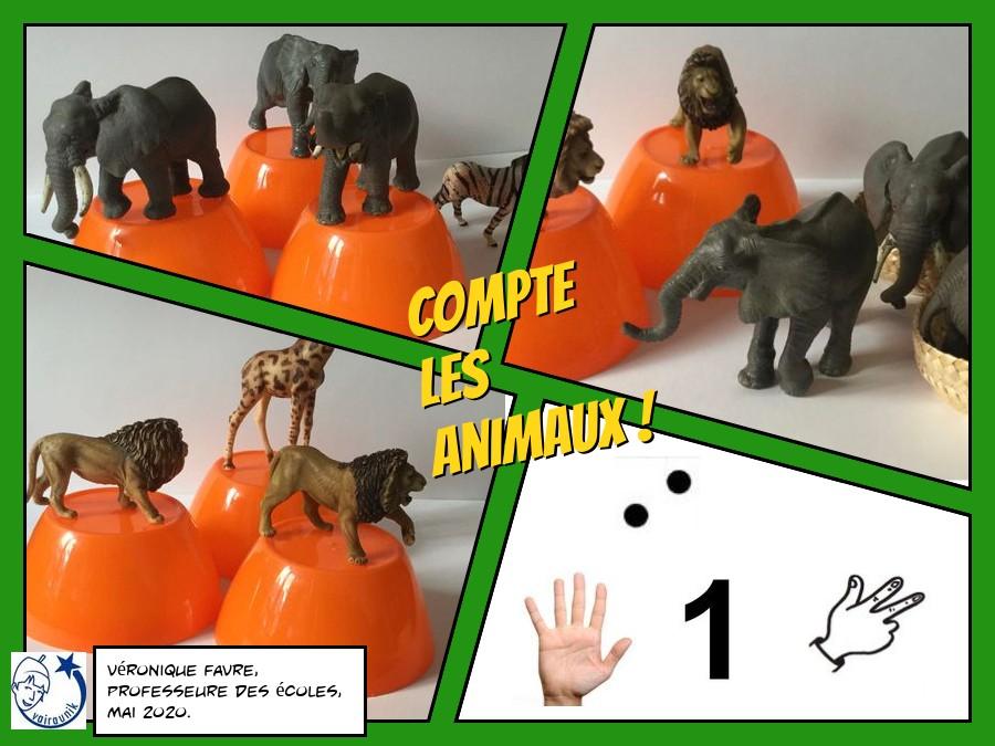 Combien d'animaux ? #1