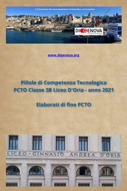 Elaborati PCTO Classe 3B