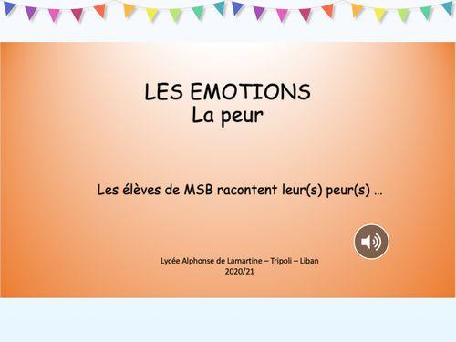 """MSB Les émotions """"la peur"""""""