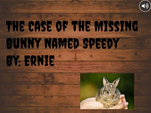 The Case of the Missing Bunny Named Speedy